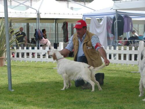 lea delle querce merizie in expo internazionale